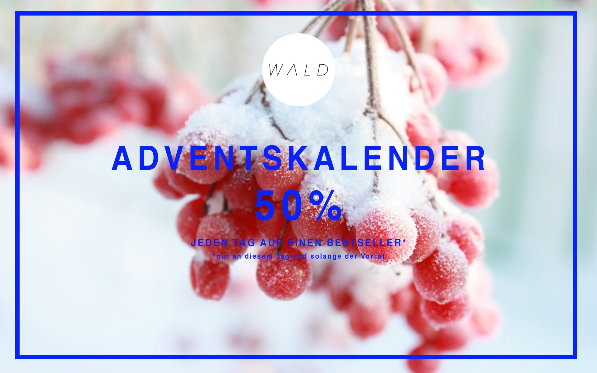 WALD Adventskalender