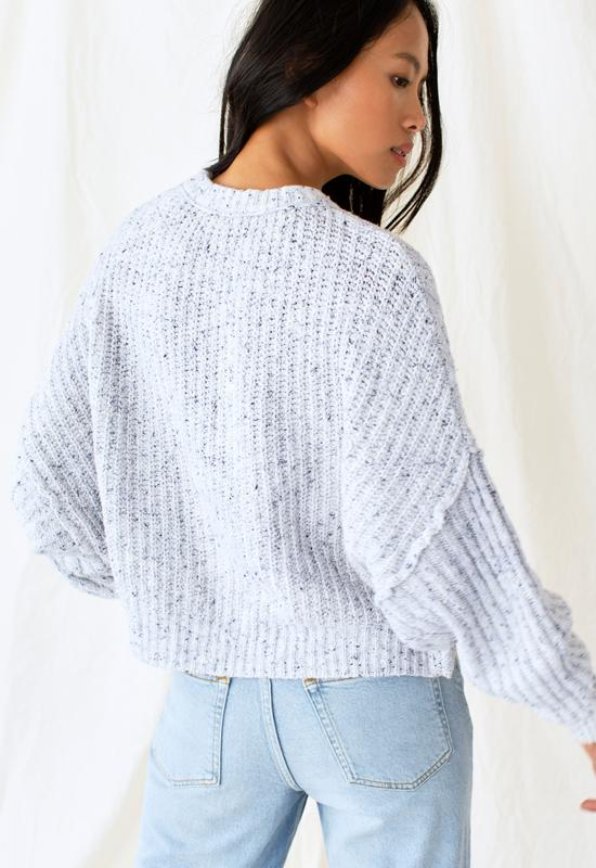 Free People - On Your Side Pullover Sweater Blue Combo