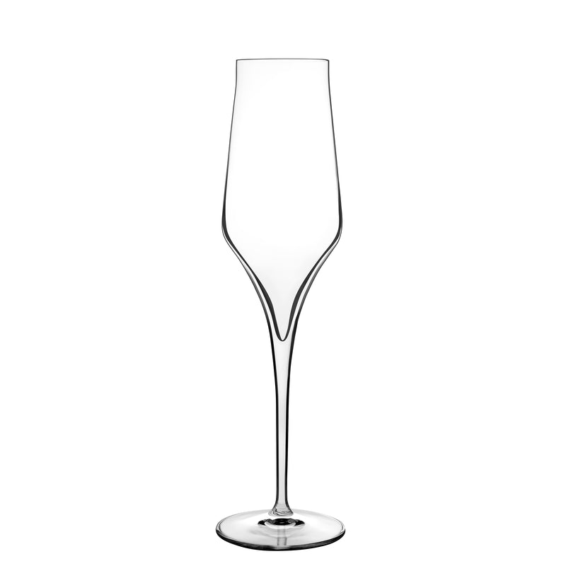 Supremo 8 oz Champagne Glasses (Set Of 2) - Luigi Bormioli