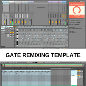 Lo Fi House drum loops + Gate Remixing template