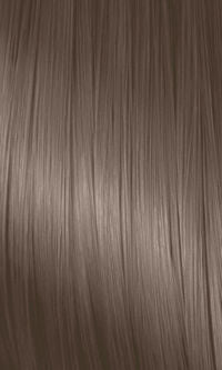 NaturColor Ash Series 6C Dark Caraway Blonde