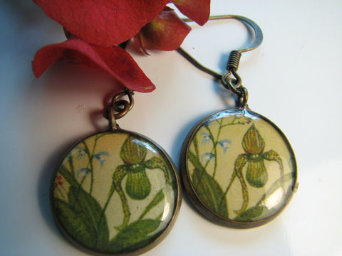 Slipper Orchid (Earrings)