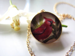 14k Gold Fill Cardinal in Papaya (Large Size)