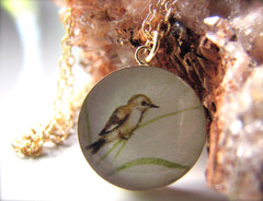 14k Gold Fill Sparrow (Large Size)