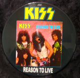 "1987 Original U.K. IMPORT Official ""REASON TO LIVE"" 4-Track (2-Sided) Picture Disc! MINT!"