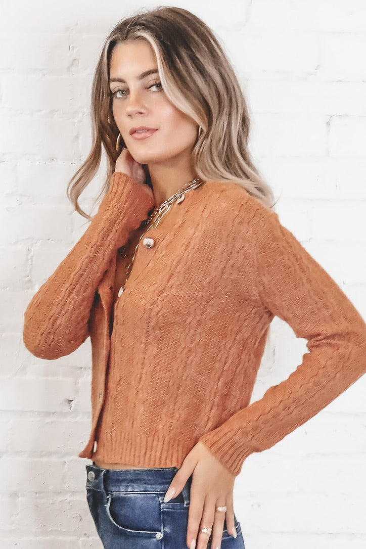 Find Someone Cinnamon Cropped Cardigan
