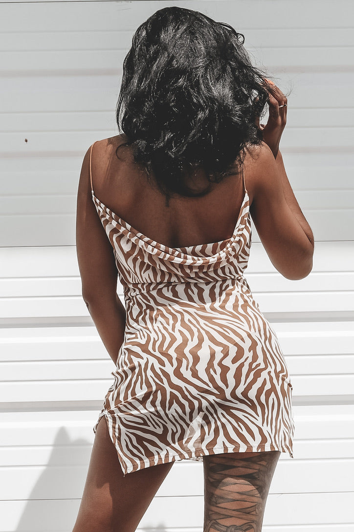 Sassy Is My Middle Name Zebra Bodysuit Mesh Dress