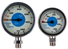 Halcyon Sumbersible Pressure Gauge with Hose