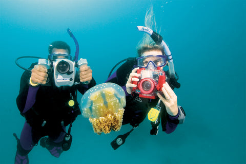 PADI Underwater Digital Photography Course