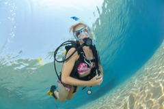 Learn to Dive - Private 1 on 1 Premium Course
