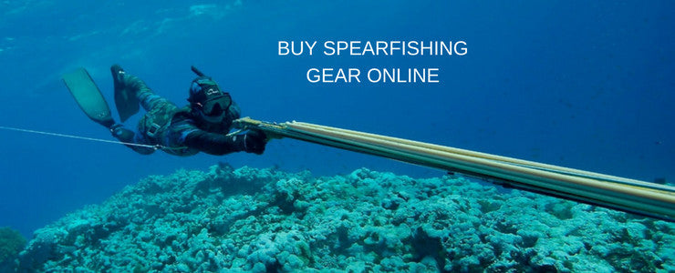Spearfishing Equipment and Training