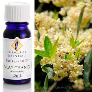 May Chang essential oil 10ml