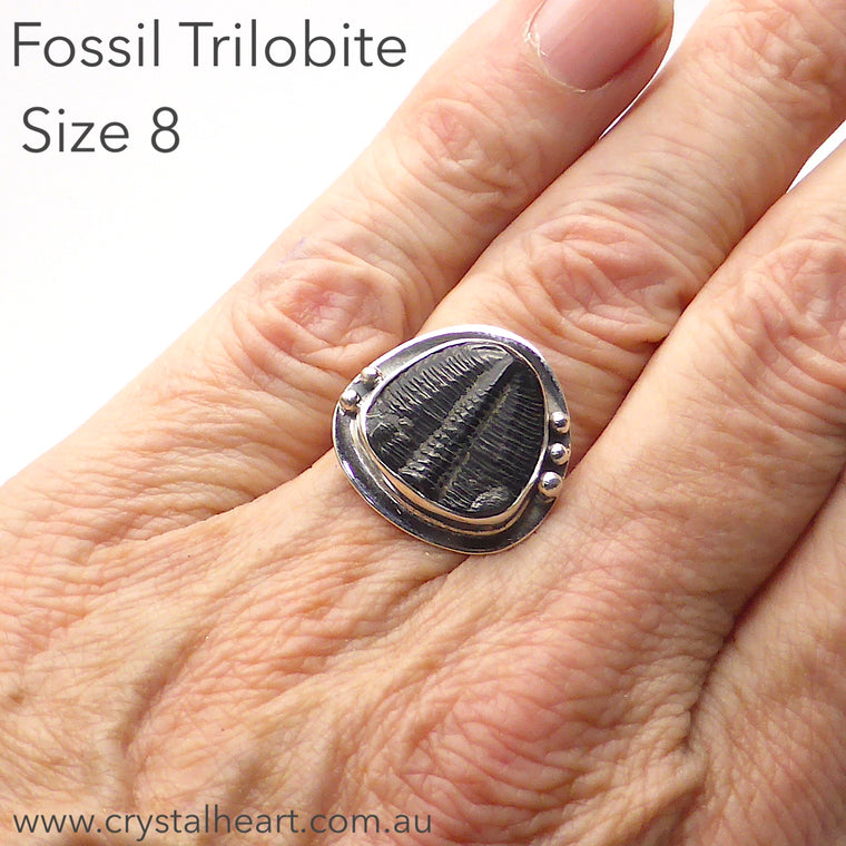 Trilobite Fossil Ring | 925 Silver | SG1