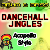 DRUM AND BASS DANCEHALL VOCALS