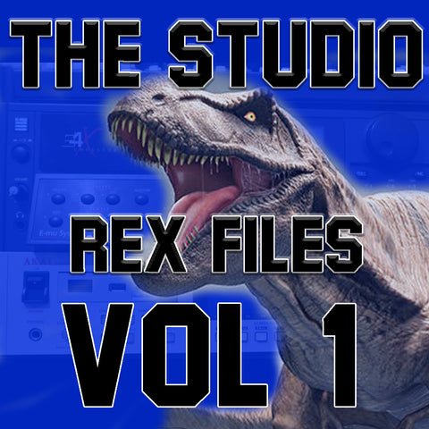 The Studio Rex Files VOL 1 ( By Bizzy B )