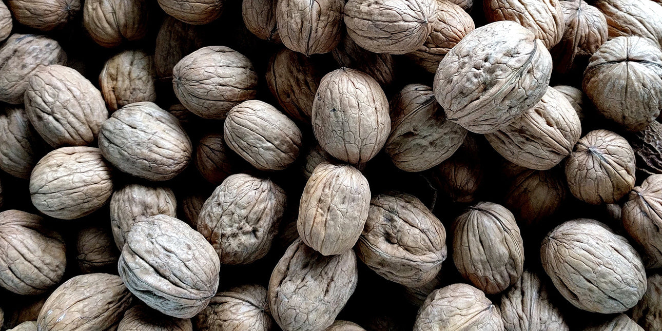 bare-biology-a-pile-of-walnuts