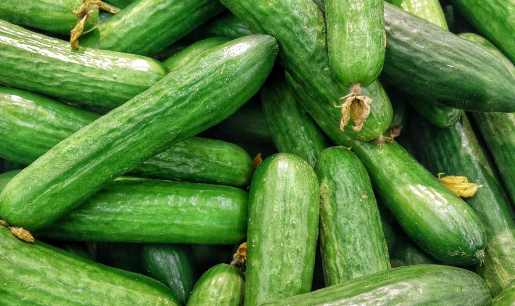 bare-biology-health-beauty-frances-phillips-love-your-skin-from-within-cucumbers