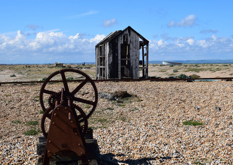 Dungeness Shore line