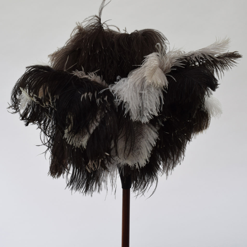 Feather Duster Long