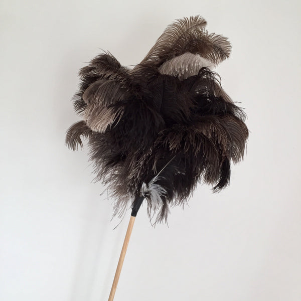 Ostrich feather duster by Redecker