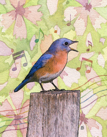 Bluesbird - 5x7 blank card