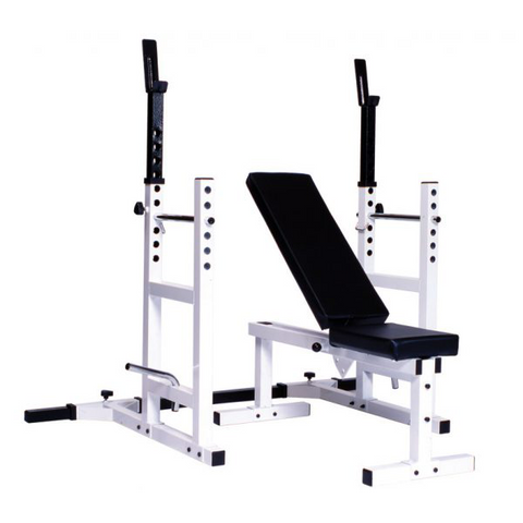 Pro Series 209 With 205 FI Bench plus 204 Cage Attachment - York