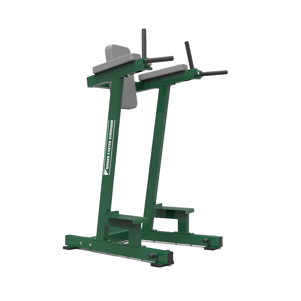 BFS - D1 VERTICAL KNEE RAISE/DIP BENCH