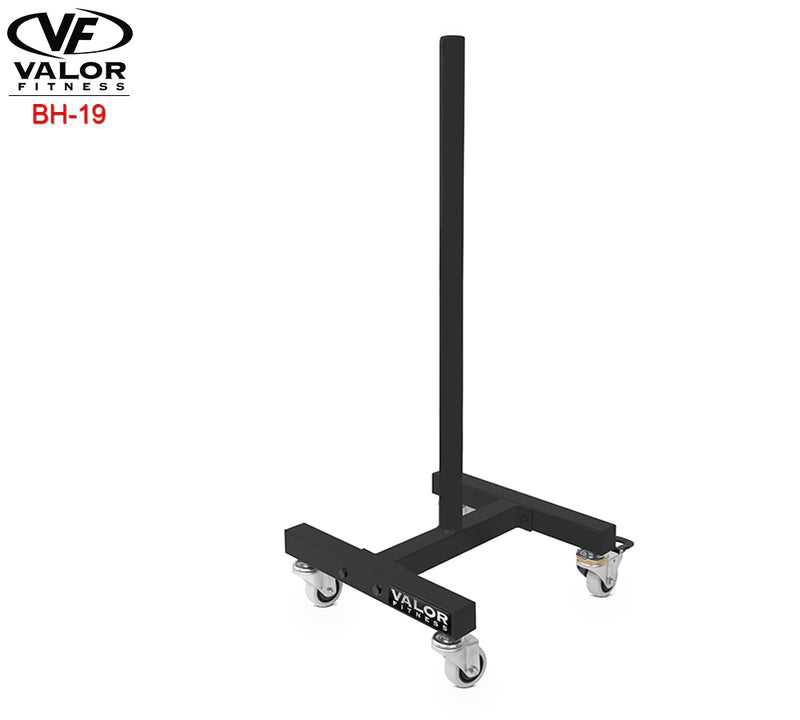 Bumper plate stand w/ wheels