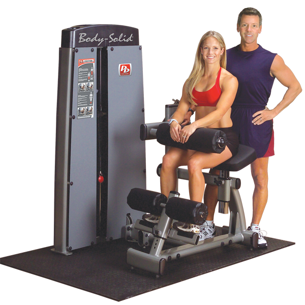 Body-Solid - Dual Ab/Back, FREESTANDING, W STACK