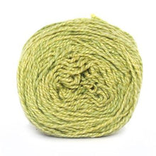 Load image into Gallery viewer, Nurturing Fibres Eco-Fusion Yarn Lime