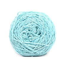 Load image into Gallery viewer, Nurturing Fibres Eco-Lush Yarn Aqua