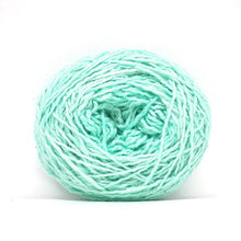 Load image into Gallery viewer, Nurturing Fibres Eco-Lush Yarn Mint