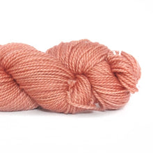 Load image into Gallery viewer, Nurturing Fibres SuperTwist Sock Yarn Quince