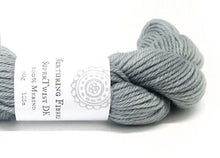 Load image into Gallery viewer, Nurturing Fibres SuperTwist DK Yarn Silver