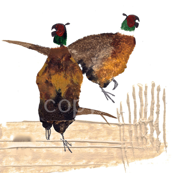 Two Cock Pheasants
