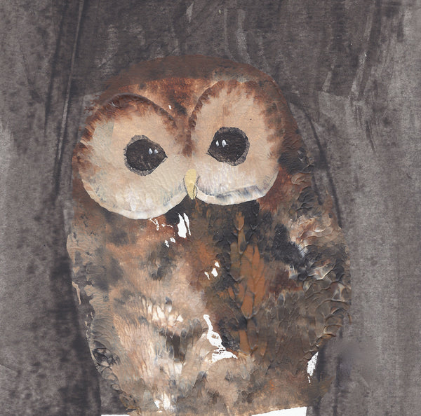 OUT OF STOCK Note Card Wallet: Barn Owl & Tawny Owl
