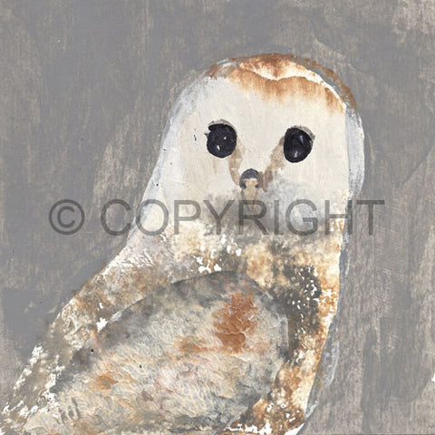 OUT OF STOCK Barn Owl