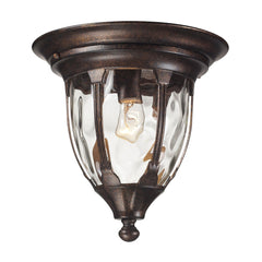 Elk 45004/1 Glendale 1 Light Outdoor Flushmount In Regal Bronze