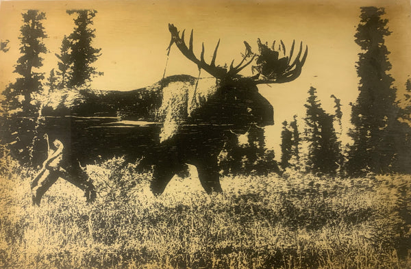 Wood Sign - Moose