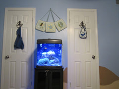 Under the Sea Kids Room