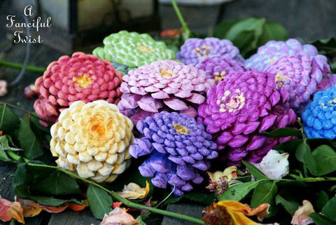 Zinnias from Pinecones