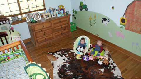 Farm Themed Kids Room