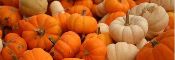 Pumpkins as Fall Home Decor