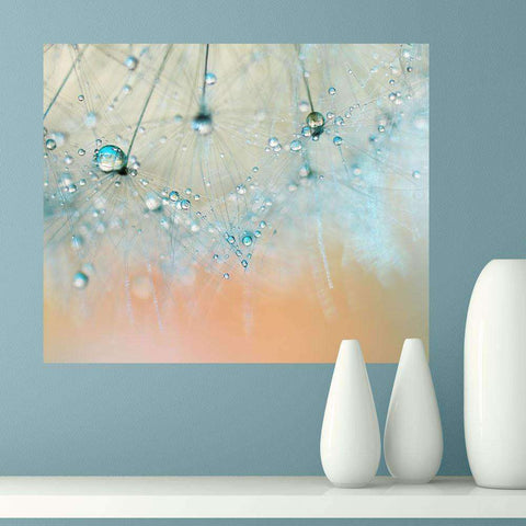 Dandelion Photography Art Wall Sticker Decal – Droplets of Aqua by Ingrid Beddoes