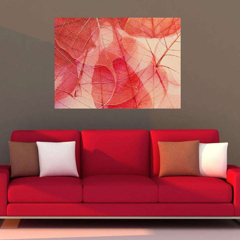 Nature Photography Fine Art Wall Sticker Decal –Fragile by Ingrid Beddoes