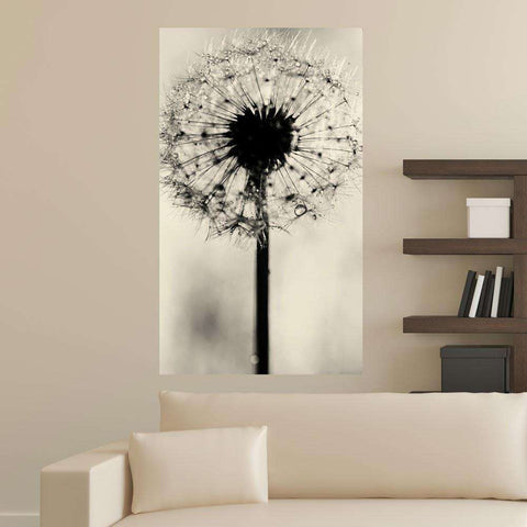 Dandelion Photography Decal -  Simply Dandy by Ingrid Beddoes