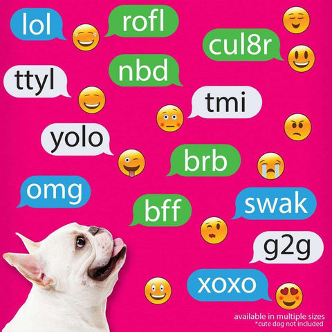 Texting and Emoticon Sticker Pack