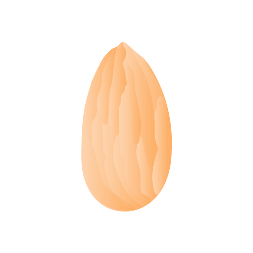 illustration of an orange almond nut