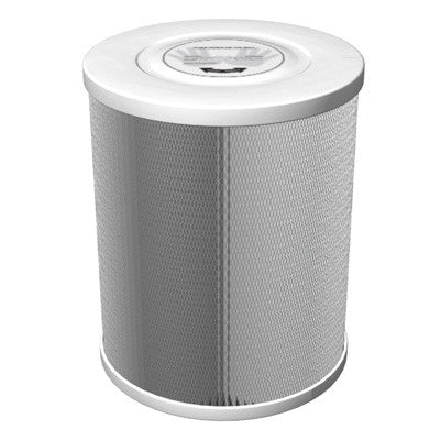Amaircare 4000 CHEM HEPA Filter
