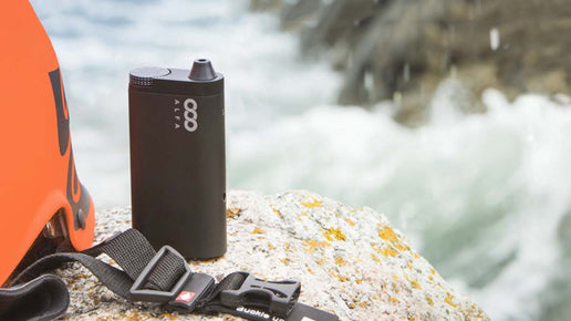 Alfa Vaporizer Now 50% Off